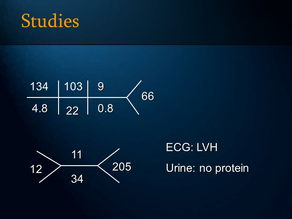 Studies 134 4.8 103 22 9 0.8 66 11 34 12 205 ECG: LVH Urine: no protein