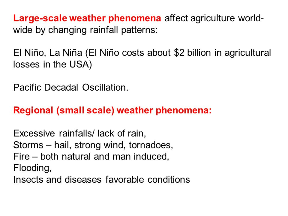Large-scale weather phenomena affect agriculture world- wide by changing rainfall patterns: El Niño, La Niña (El Niño costs about $2 billion in agricultural losses in the USA) Pacific Decadal Oscillation.