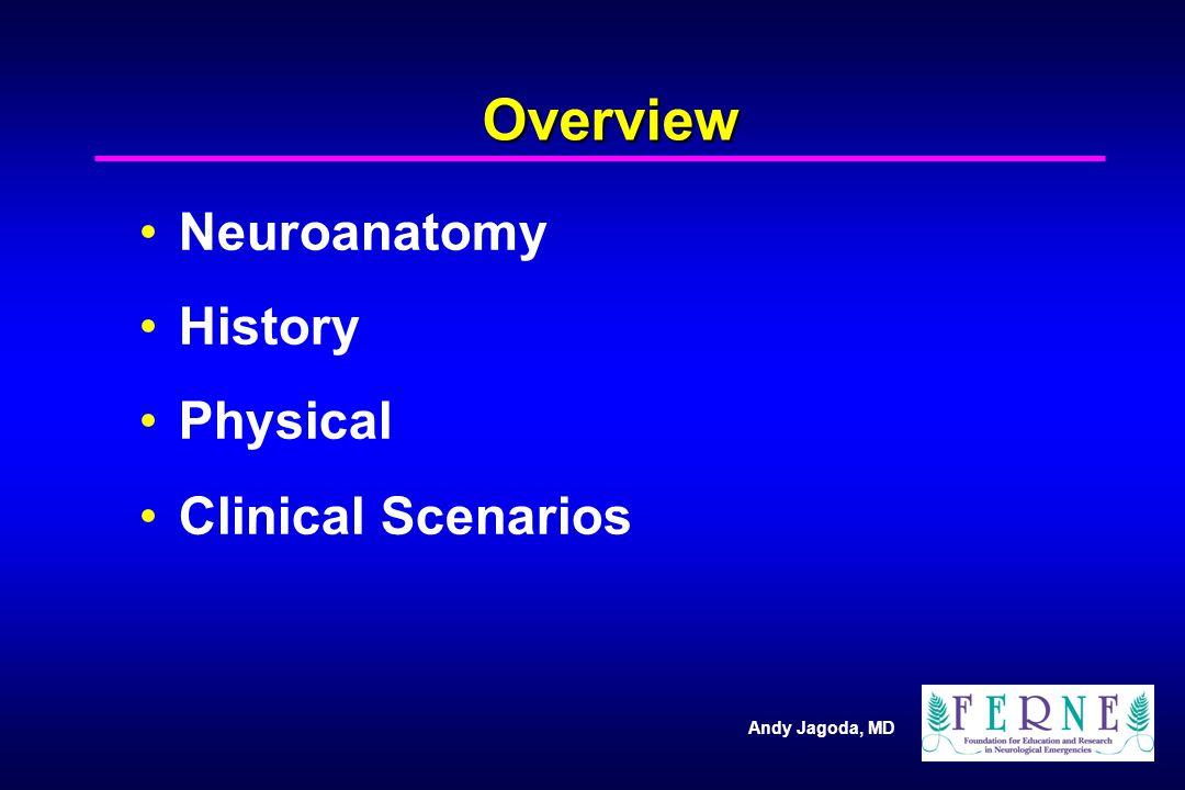 The Neuro Exam: Physical Mental Status Cranial Nerves Motor Sensory Coordination Reflexes