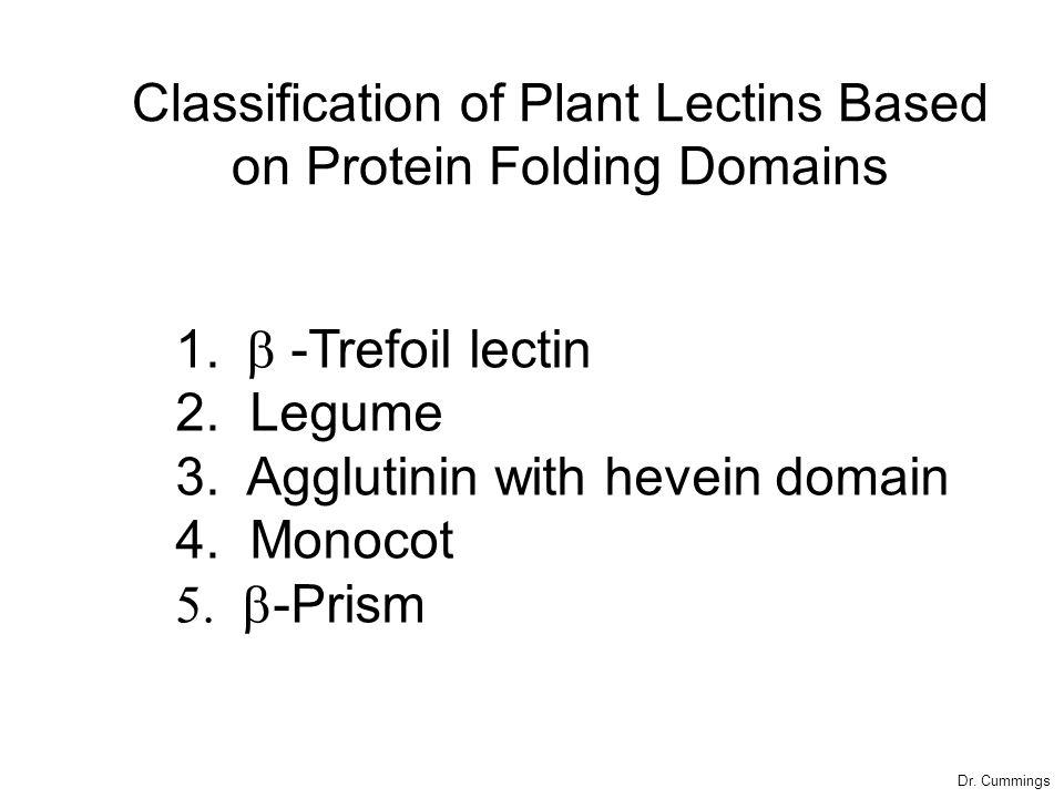 1.  -Trefoil lectin 2. Legume 3. Agglutinin with hevein domain 4.