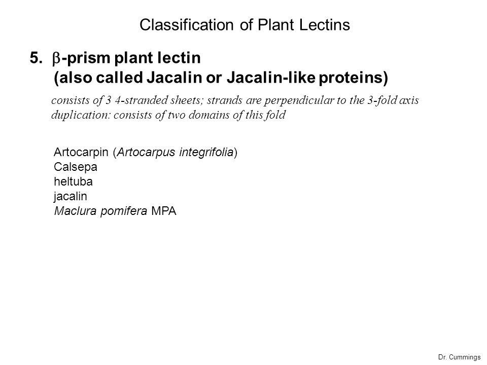 5.  -prism plant lectin (also called Jacalin or Jacalin-like proteins) Artocarpin (Artocarpus integrifolia) Calsepa heltuba jacalin Maclura pomifer