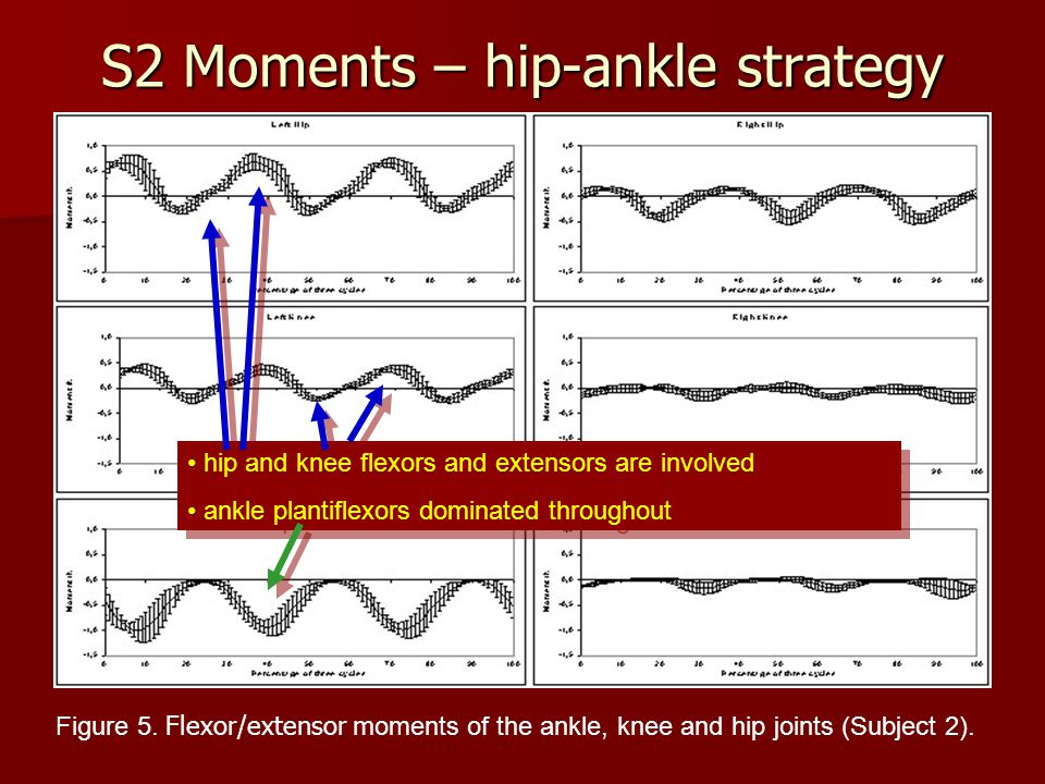 S2 Moments – hip-ankle strategy Figure 5. Flexor/extensor m oments of the ankle, knee and hip joints (Subject 2). hip and knee flexors and extensors a