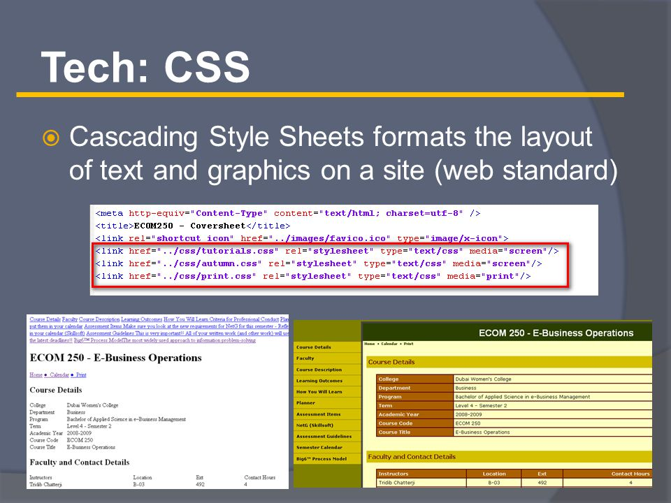Tech: CSS  Cascading Style Sheets formats the layout of text and graphics on a site (web standard)