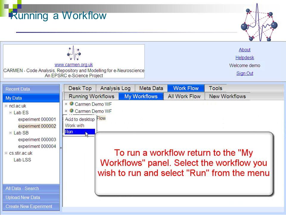 Running a Workflow
