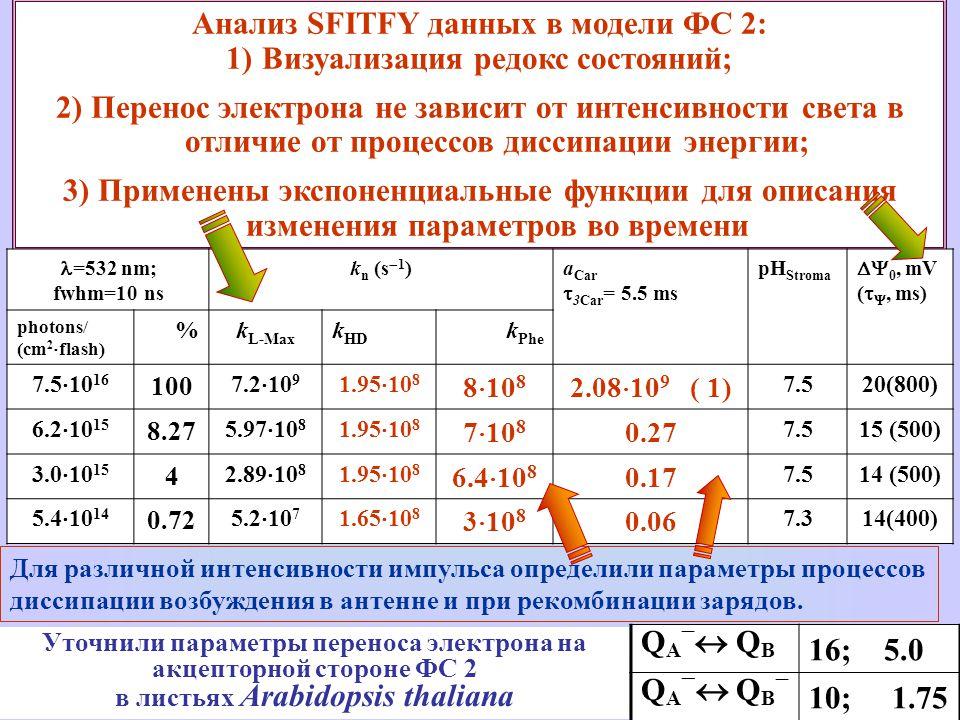 Анализ SFITFY данных в модели ФС 2: 1)Визуализация редокс состояний; 2) Перенос электрона не зависит от интенсивности света в отличие от процессов диссипации энергии; 3) Применены экспоненциальные функции для описания изменения параметров во времени Для различной интенсивности импульса определили параметры процессов диссипации возбуждения в антенне и при рекомбинации зарядов.