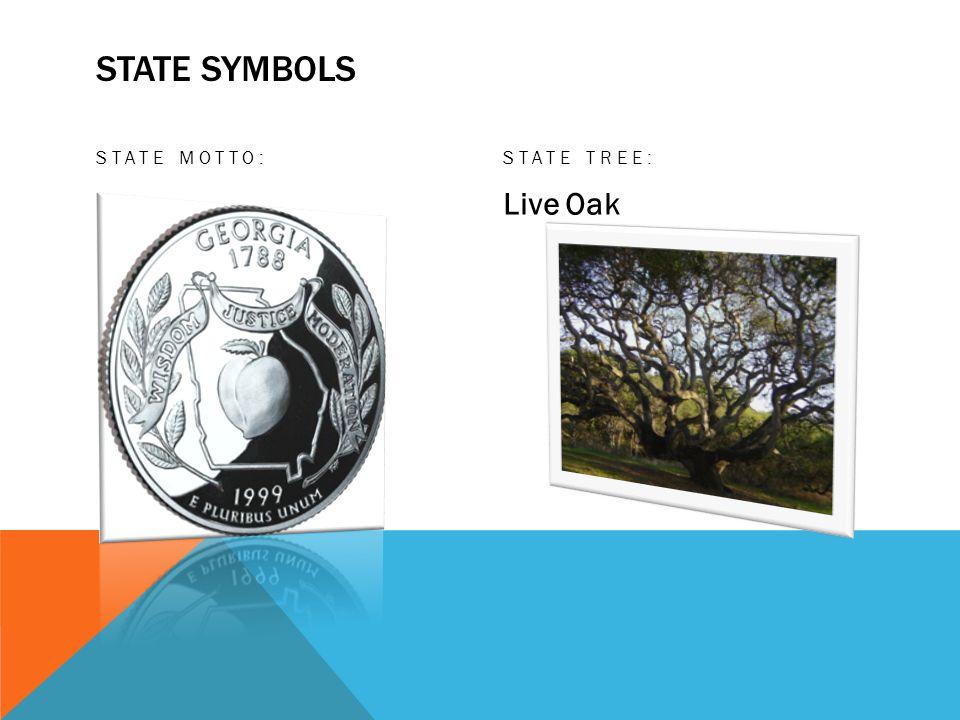 STATE SYMBOLS STATE MOTTO:STATE TREE: Live Oak