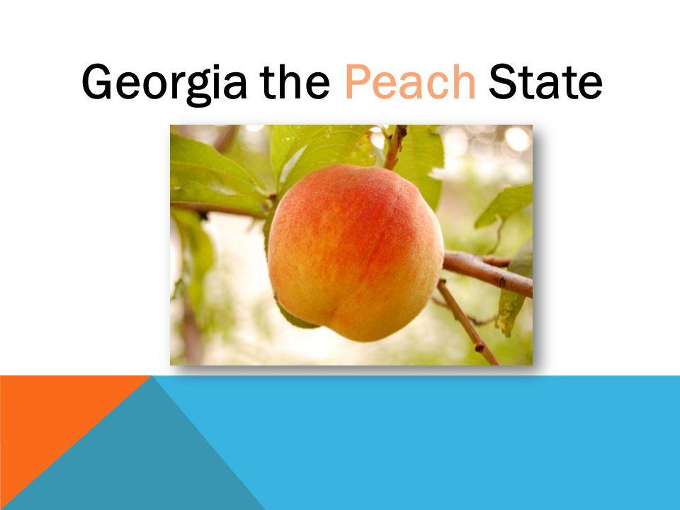 Georgia the Peach State