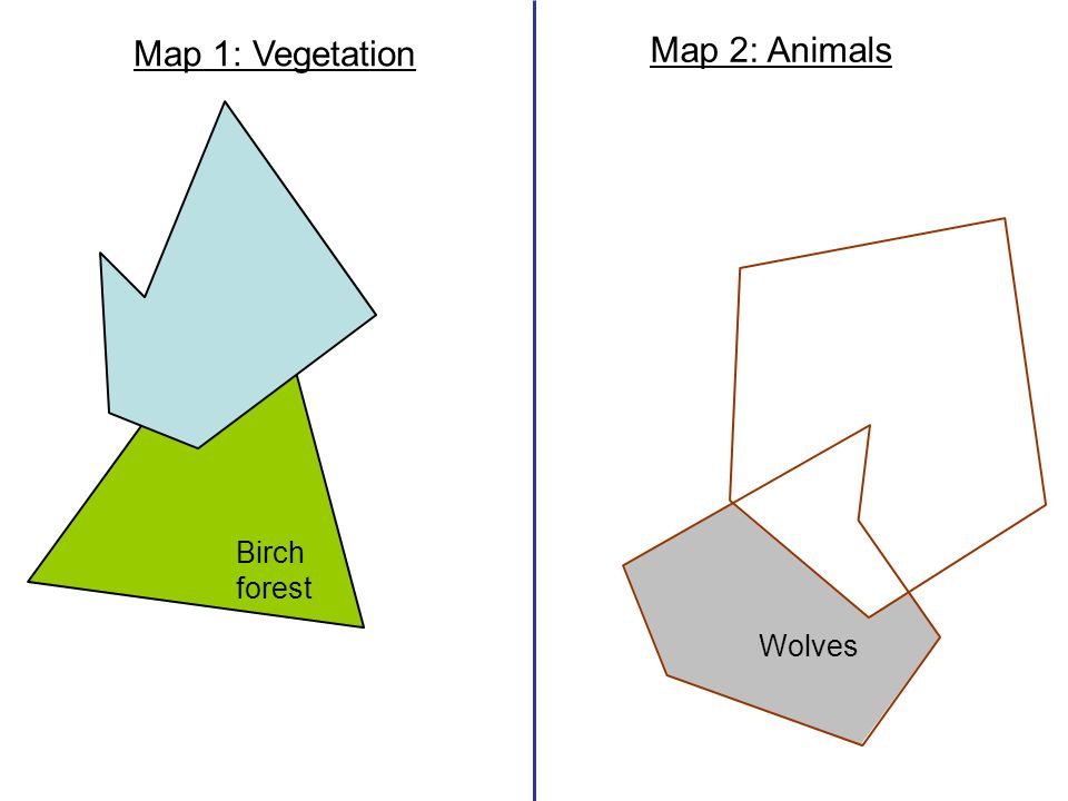 Birch forest Wolves Map 1: Vegetation Map 2: Animals