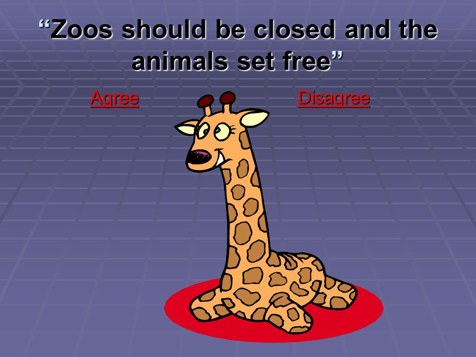 Zoos should be closed and the animals set free Agree Agree Disagree Disagree