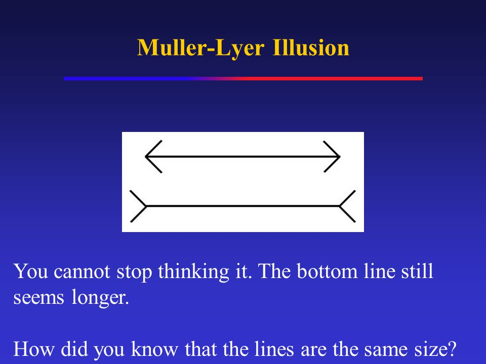 You cannot stop thinking it. The bottom line still seems longer. How did you know that the lines are the same size?