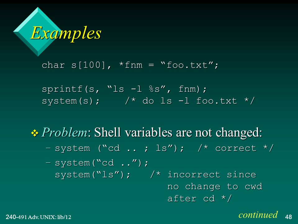 240-491 Adv.UNIX: lib/1249 v The Bourne shell is used to execute the command.