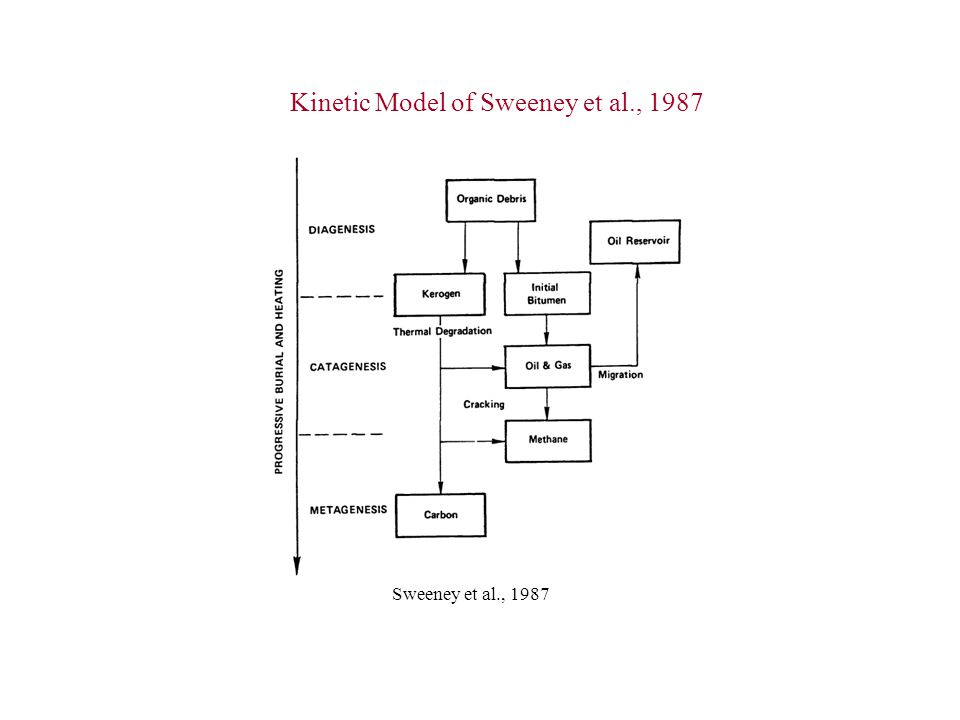 Kinetic Model of Sweeney et al., 1987 Sweeney et al., 1987