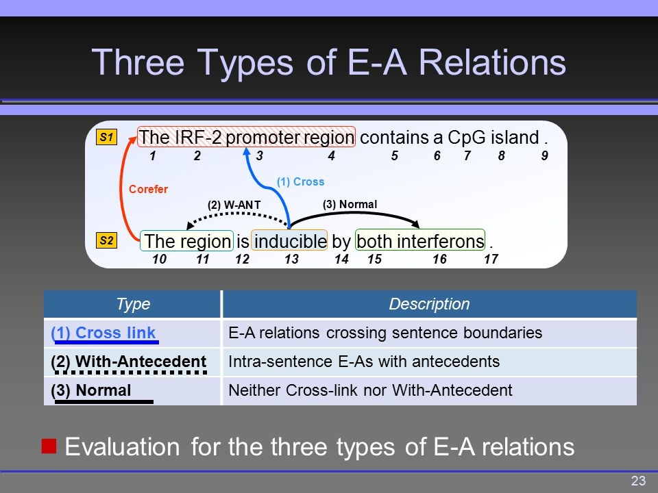 23 Three Types of E-A Relations (2) W-ANT (3) Normal Corefer (1) Cross S1 S2 The IRF-2 promoter region contains a CpG island.