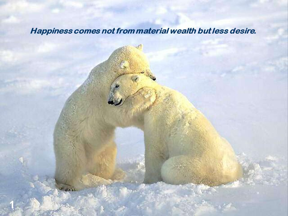 Happiness comes not from material wealth but less desire. 1