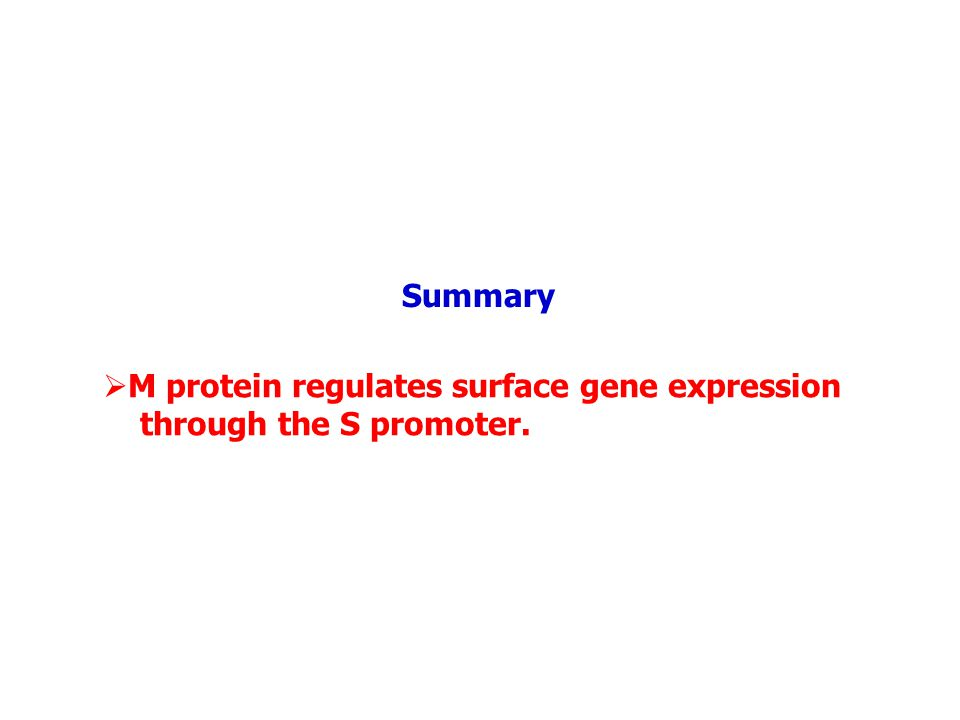  M protein regulates surface gene expression through the S promoter. Summary
