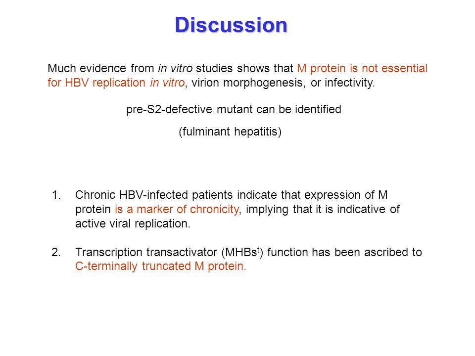 Discussion Much evidence from in vitro studies shows that M protein is not essential for HBV replication in vitro, virion morphogenesis, or infectivit