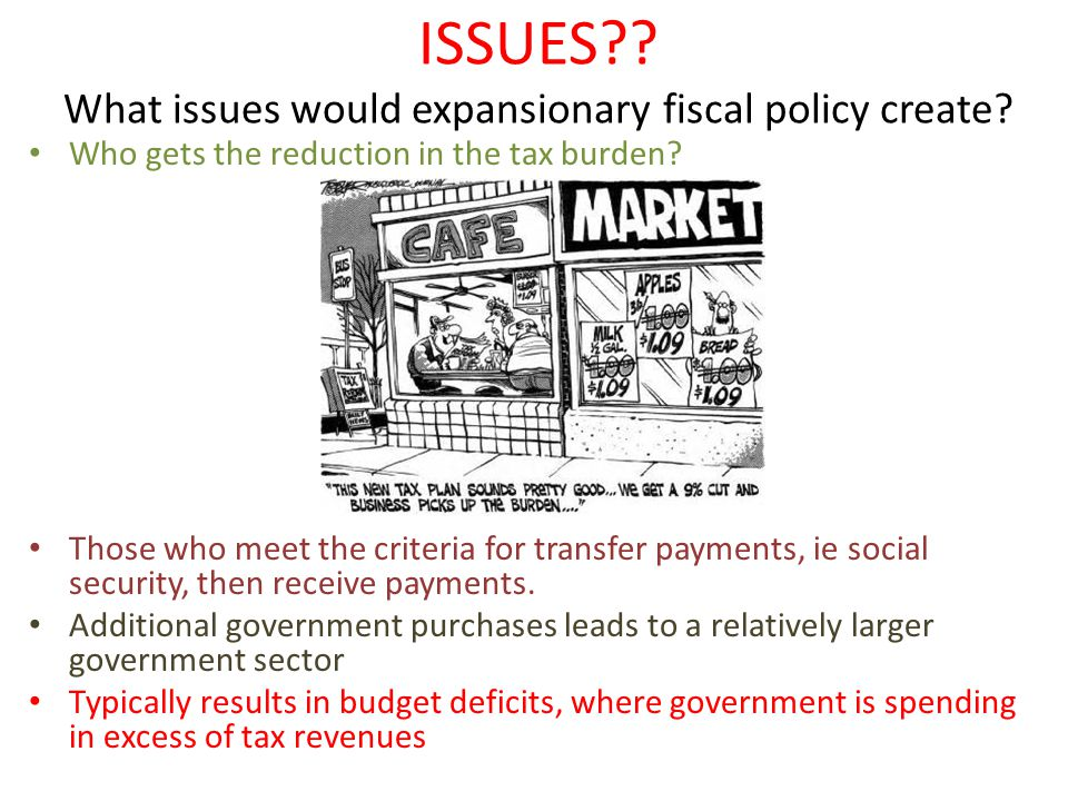 ISSUES . What issues would expansionary fiscal policy create.