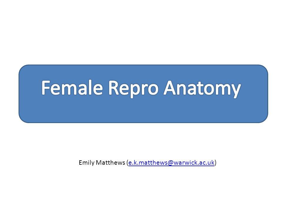 Emily Matthews (e.k.matthews@warwick.ac.uk)e.k.matthews@warwick.ac.uk