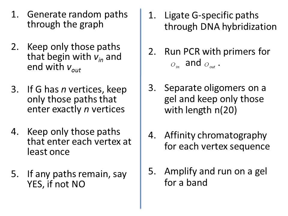 1.Generate random paths through the graph 2.Keep only those paths that begin with v in and end with v out 3.If G has n vertices, keep only those paths that enter exactly n vertices 4.Keep only those paths that enter each vertex at least once 5.If any paths remain, say YES, if not NO 1.Ligate G-specific paths through DNA hybridization 2.Run PCR with primers for and.