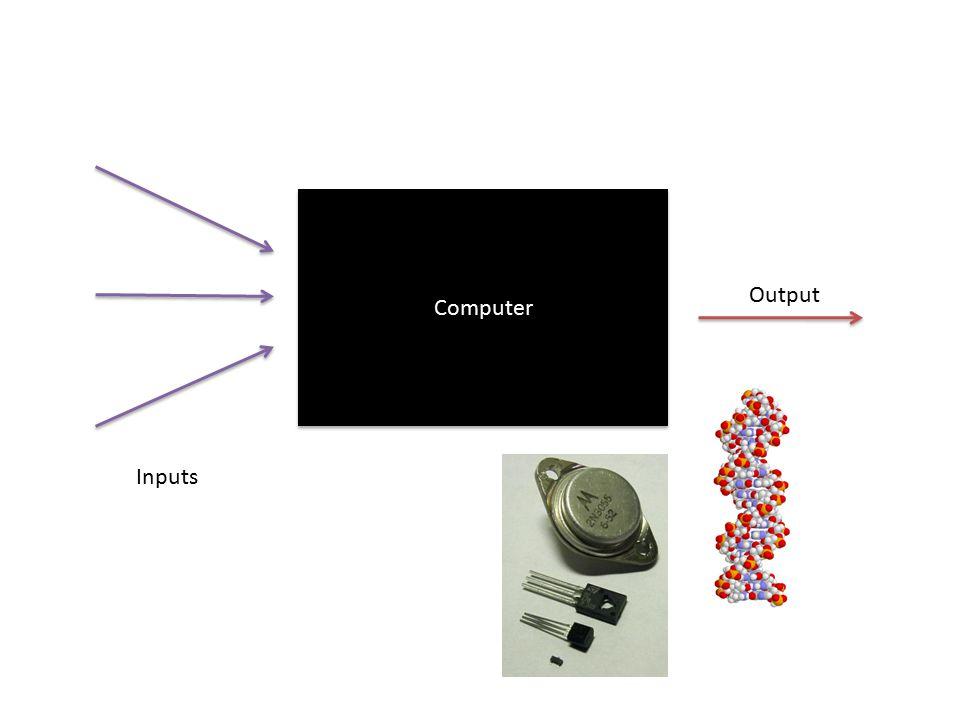 Computer Inputs Output