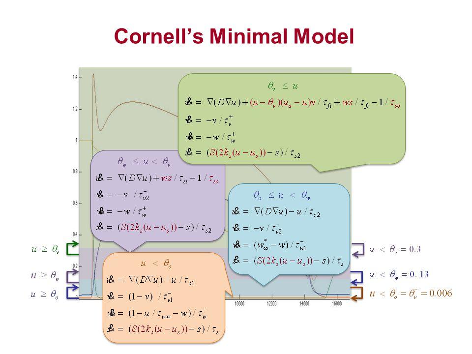 Cornell's Minimal Model