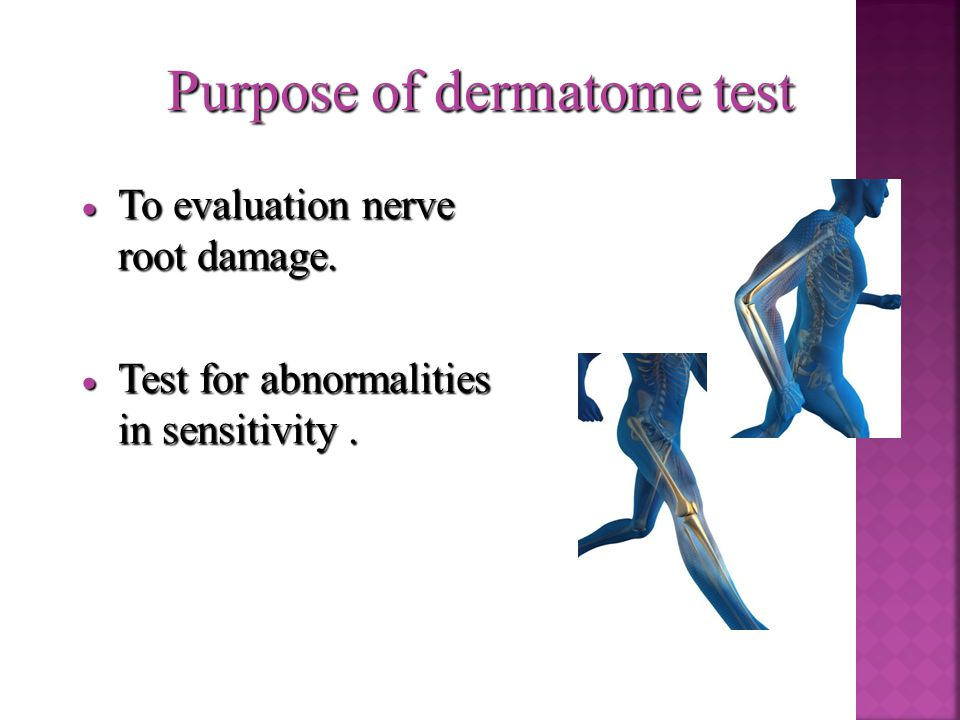Purpose of dermatome test  To evaluation nerve root damage.