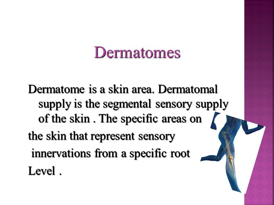Dermatomes Dermatome is a skin area. Dermatomal supply is the segmental sensory supply of the skin.