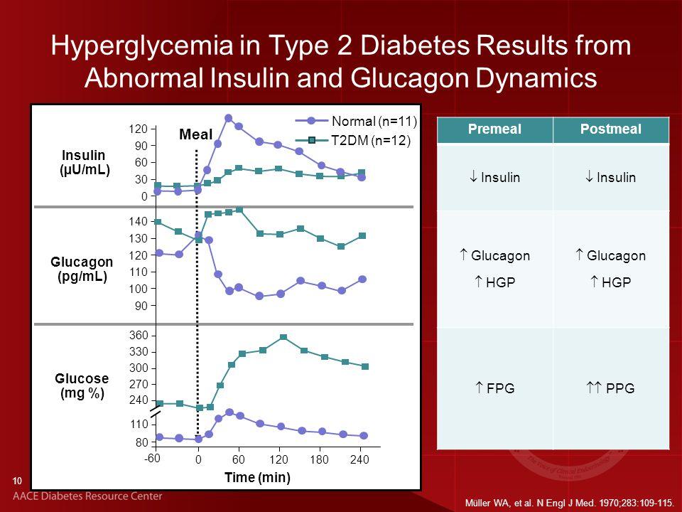 PremealPostmeal  Insulin  Glucagon  HGP  Glucagon  HGP  FPG  PPG Hyperglycemia in Type 2 Diabetes Results from Abnormal Insulin and Glucagon Dynamics Glucose (mg %) Insulin (µU/mL) Glucagon (pg/mL) Time (min) -60 060120180240 Meal 120 90 60 30 0 140 130 120 110 100 90 360 330 300 270 T2DM (n=12) Normal (n=11) 240 110 80 10 Müller WA, et al.