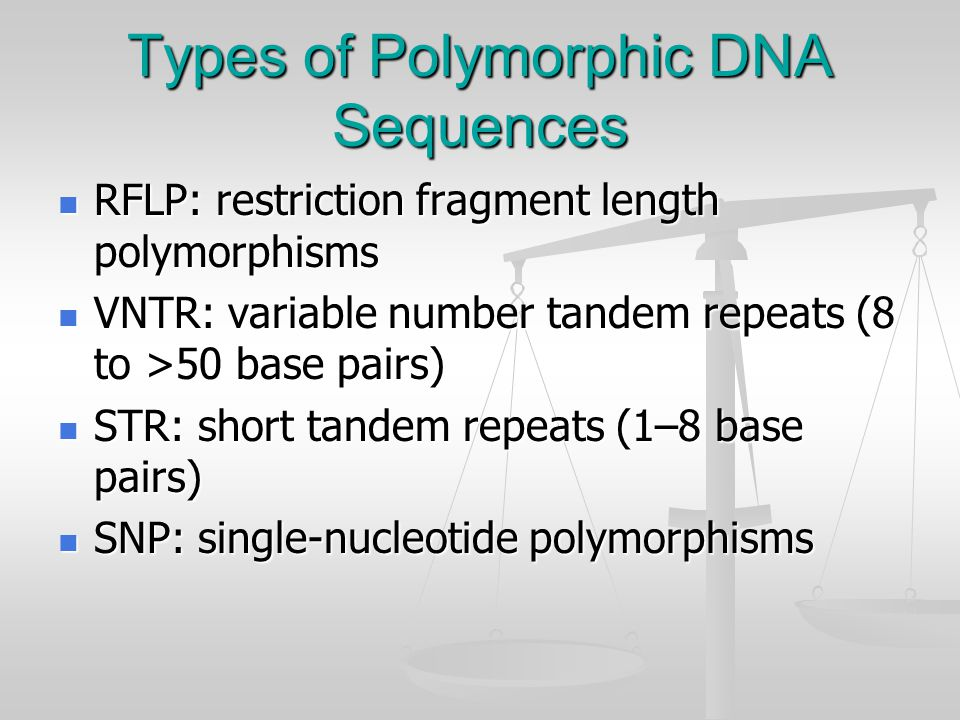 Polymorphism A DNA polymorphism is a sequence difference compared to a reference standard that is present in at least 1–2% of a population.