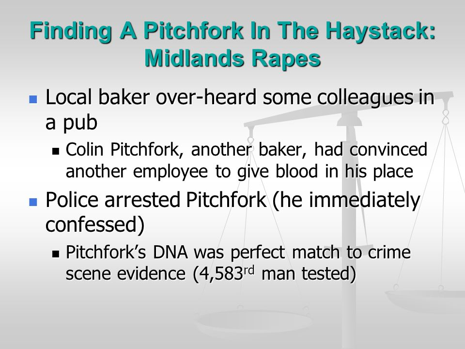 Finding A Pitchfork In The Haystack: Midlands Rapes Semen samples from rape/murder scenes: Semen samples from rape/murder scenes: Both crimes committed by same man Both crimes committed by same man Blood sample from kitchen porter: Blood sample from kitchen porter: Did not match crime scene evidence Did not match crime scene evidence Police felt that the murderer was a local Police felt that the murderer was a local Tested DNA from every man between the age of 17-34 (4,582 men) in the local area Tested DNA from every man between the age of 17-34 (4,582 men) in the local area No matches found No matches found
