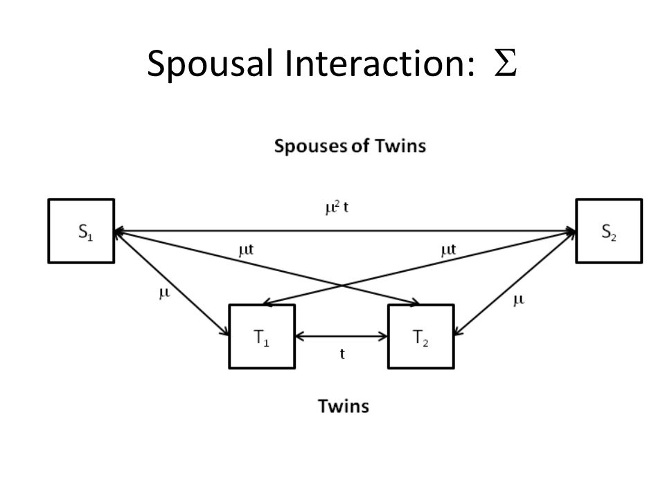 Spousal Interaction: 