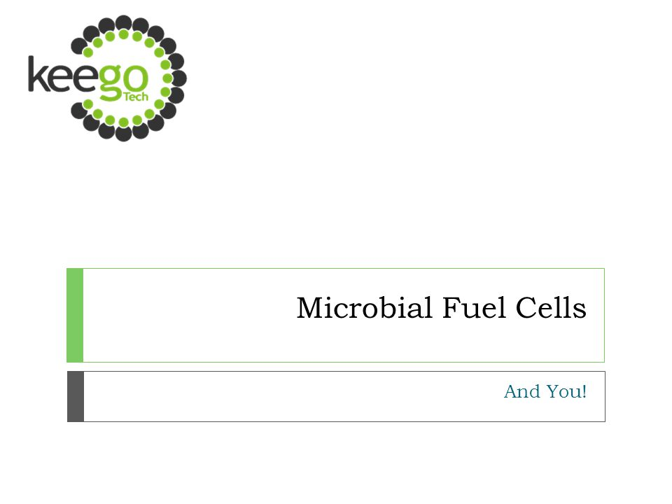 Microbial Fuel Cells And You!