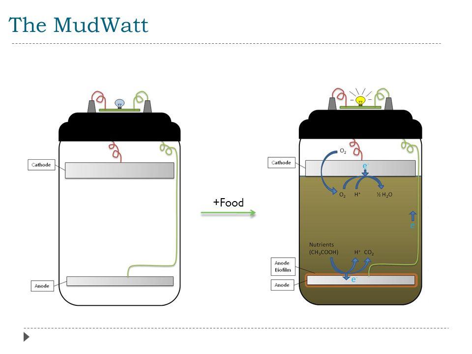 The MudWatt +Food