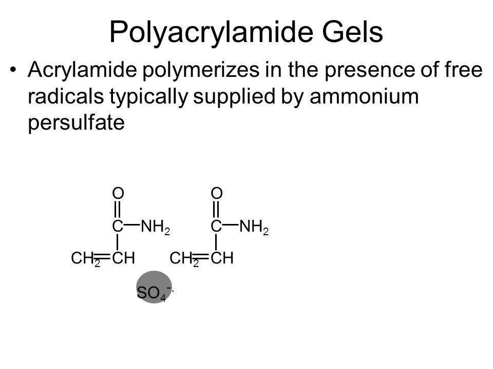 Polyacrylamide Gels O CHCH 2 NH 2 C O CHCH 2 NH 2 C SO 4 -.