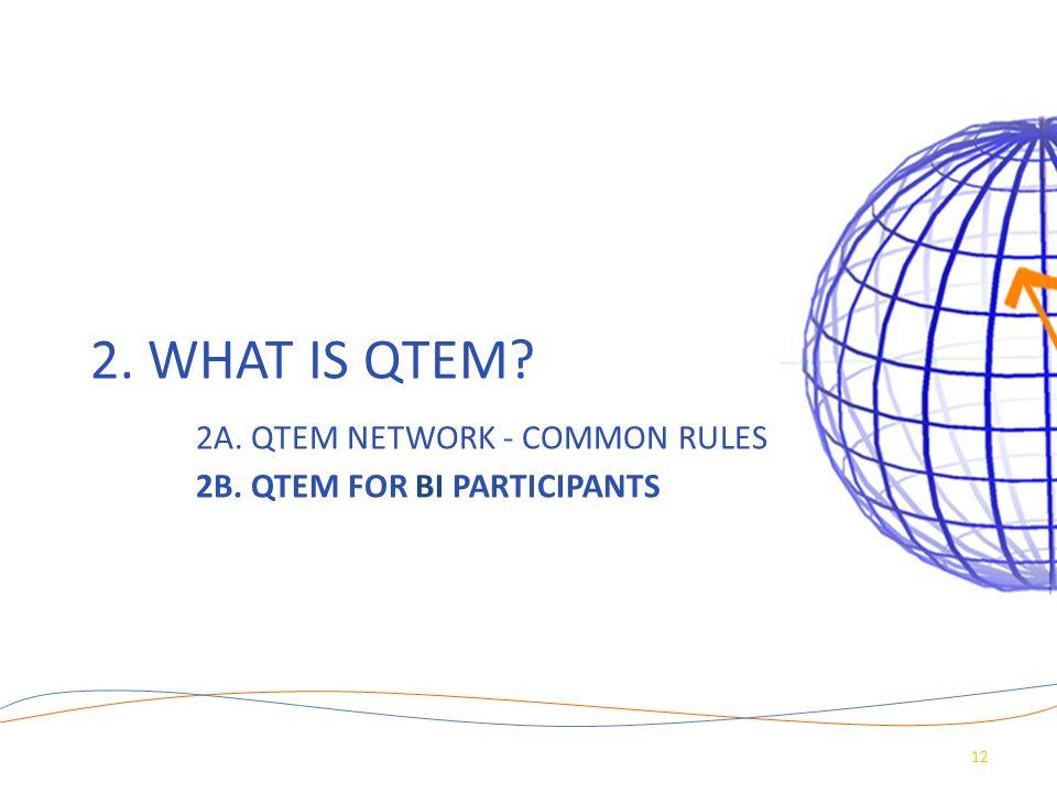 2. WHAT IS QTEM? 2A. QTEM NETWORK - COMMON RULES 2B. QTEM FOR BI PARTICIPANTS 12