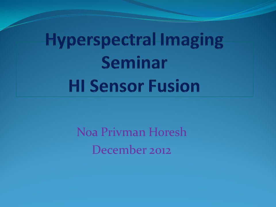 Noa Privman Horesh December 2012