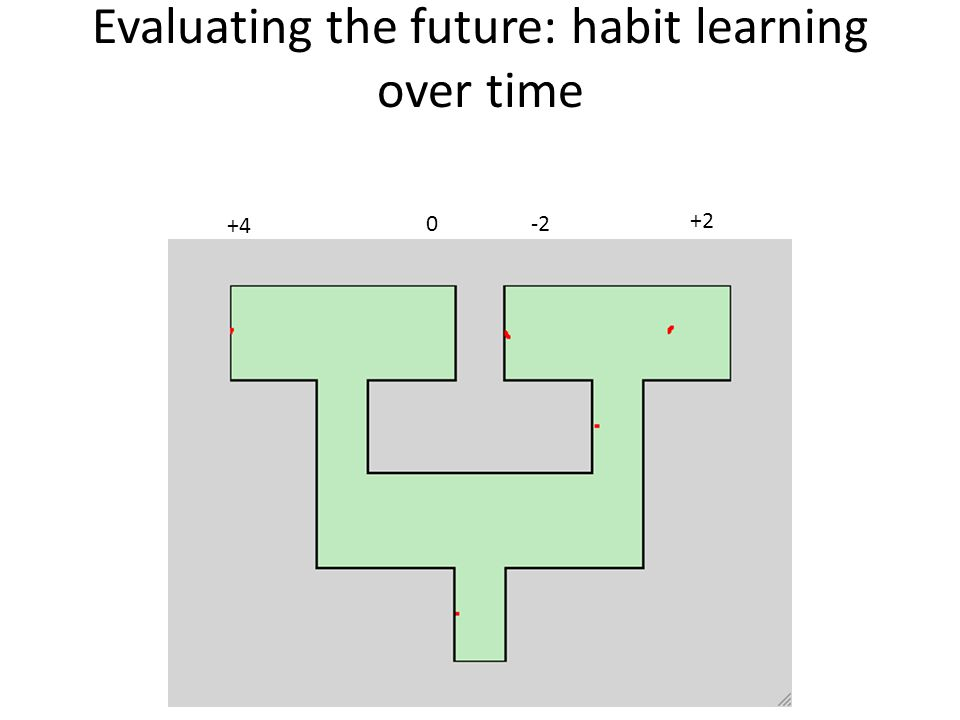 Evaluating the future: habit learning over time +4 0-2 +2