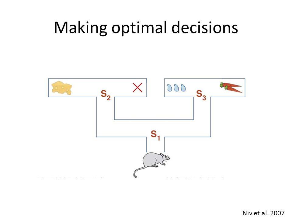 Making optimal decisions Niv et al. 2007