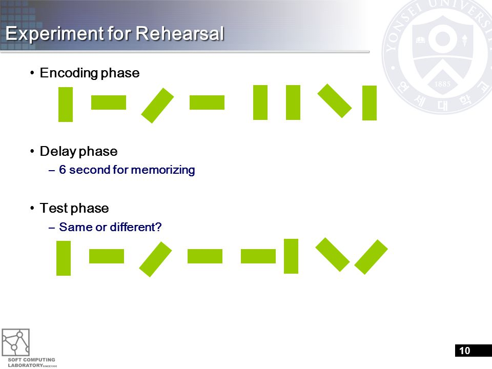 Experiment for Rehearsal Encoding phase Delay phase –6 second for memorizing Test phase –Same or different.