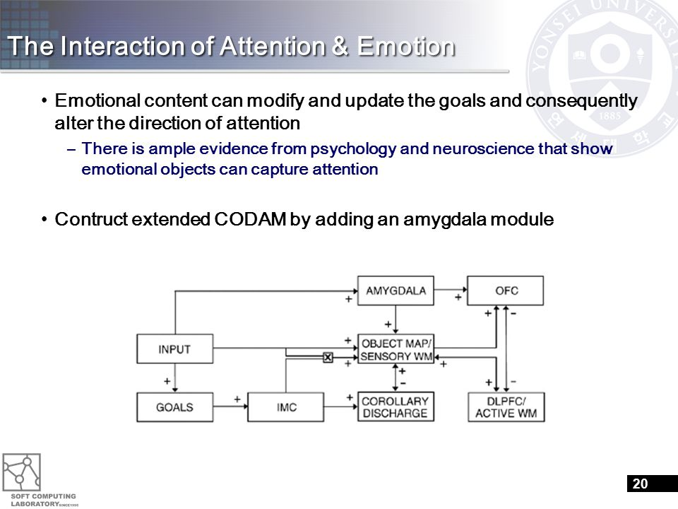 The Interaction of Attention & Emotion Emotional content can modify and update the goals and consequently alter the direction of attention –There is ample evidence from psychology and neuroscience that show emotional objects can capture attention Contruct extended CODAM by adding an amygdala module 20