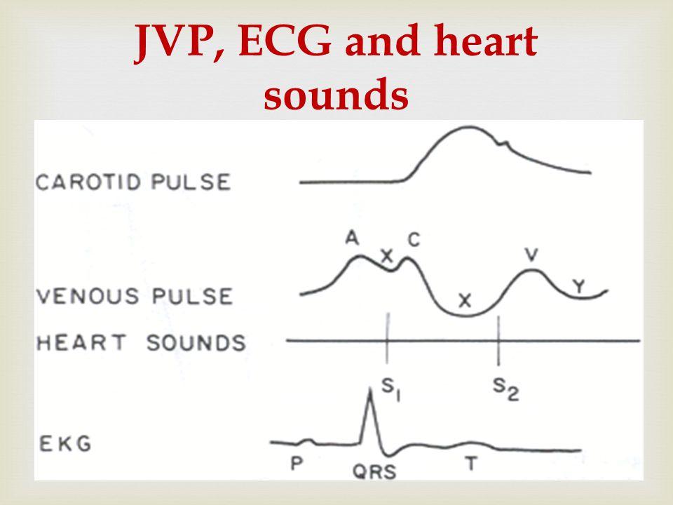  JVP, ECG and heart sounds
