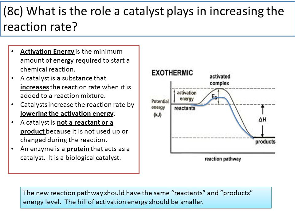 (8c) What is the role a catalyst plays in increasing the reaction rate.