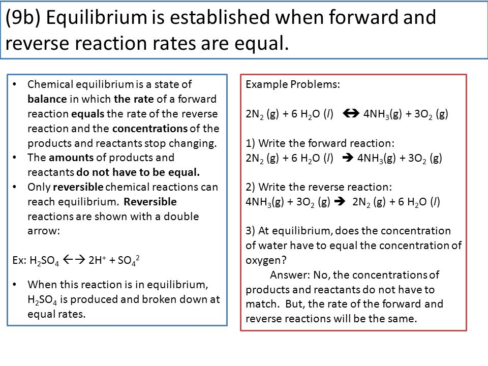 (9b) Equilibrium is established when forward and reverse reaction rates are equal.
