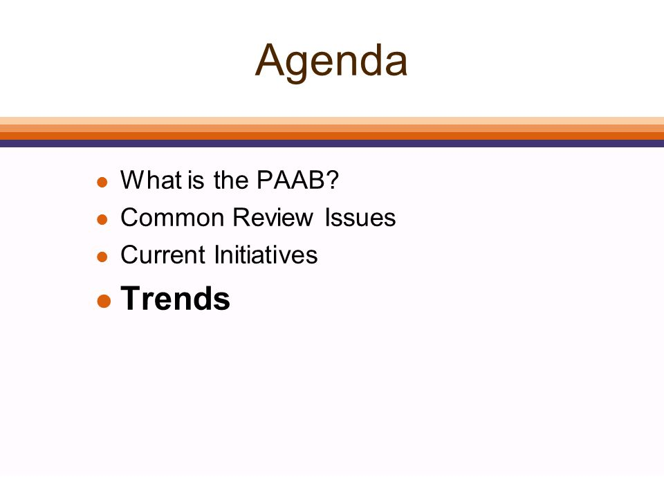 Agenda l What is the PAAB? l Common Review Issues l Current Initiatives l Trends