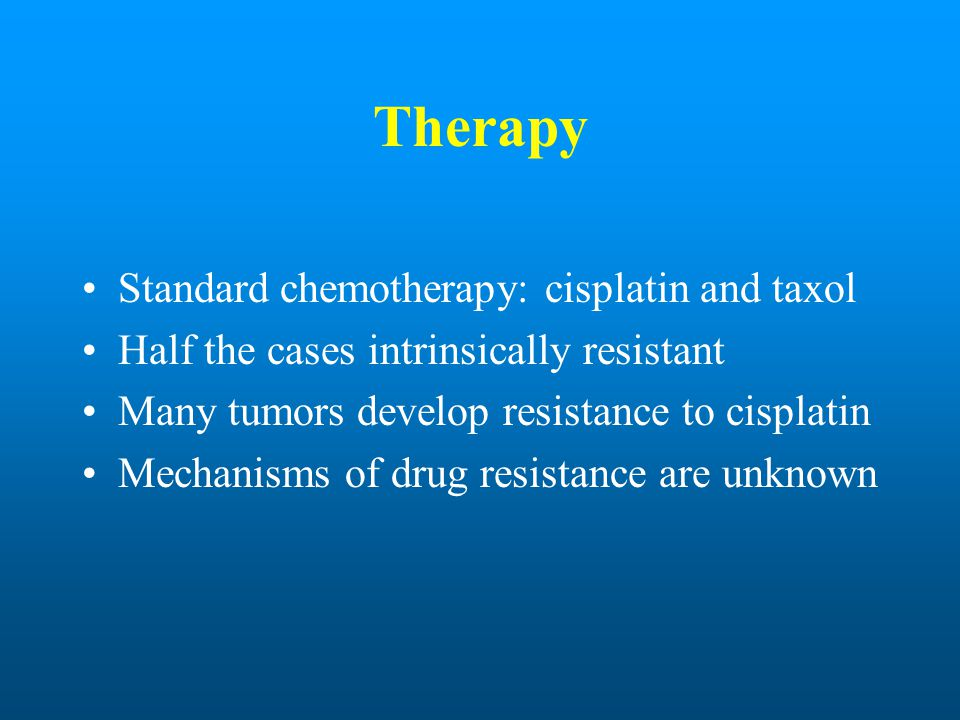 Therapy Standard chemotherapy: cisplatin and taxol Half the cases intrinsically resistant Many tumors develop resistance to cisplatin Mechanisms of dr
