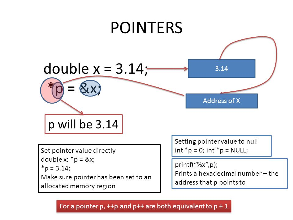 POINTERS double x = 3.14; *p = &x; p will be 3.14 3.14 Address of X Set pointer value directly double x; *p = &x; *p = 3.14; Make sure pointer has been set to an allocated memory region Setting pointer value to null int *p = 0; int *p = NULL; printf( %x ,p); Prints a hexadecimal number – the address that p points to For a pointer p, ++p and p++ are both equivalent to p + 1