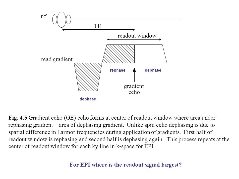 Fig. 4.5 Gradient echo (GE) echo forms at center of readout window where area under rephasing gradient = area of dephasing gradient. Unlike spin echo