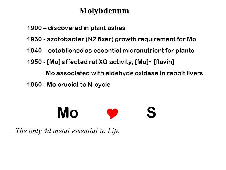 Molybdenum 1900 – discovered in plant ashes 1930 - azotobacter (N2 fixer) growth requirement for Mo 1940 – established as essential micronutrient for plants 1950 - [Mo] affected rat XO activity; [Mo]~ [flavin] Mo associated with aldehyde oxidase in rabbit livers 1960 - Mo crucial to N-cycle Mo  S The only 4d metal essential to Life