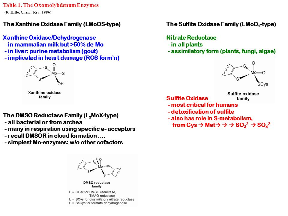 Table 1. The Oxomolybdenum Enzymes (R. Hille, Chem.