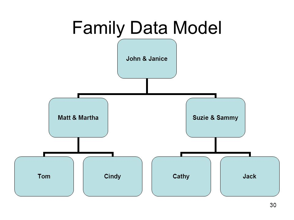 30 Family Data Model John & Janice Matt & Martha TomCindy Suzie & Sammy CathyJack